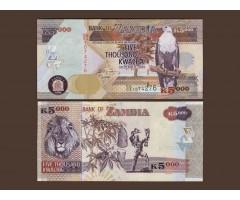 Замбия 5000 квача 2008 год