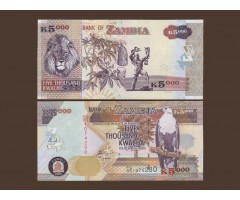 Замбия 5000 квача 2008 года
