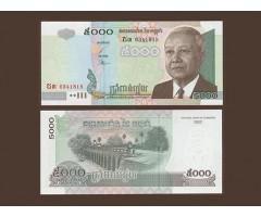 Комбоджа 5000 риелей 2002 года