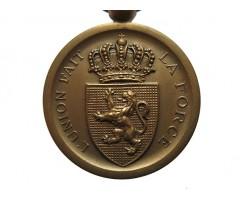 Бельгия медаль В память войны 1870-1871 гг.