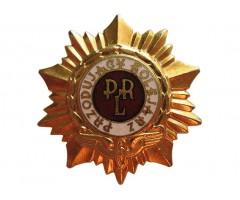 Лучший (ведущий) железнодорожник (золотой)