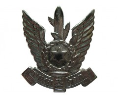 Кокарда ВВС Армии Обороны Израиля