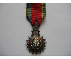 Орден белого слона V степень ( рыцарь )
