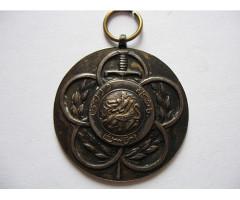 Неатрибутированная медаль за службу в полиции