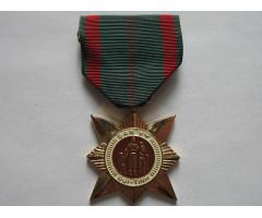 Республика Вьетнам (США) медаль за гражданские действия 1-й степени
