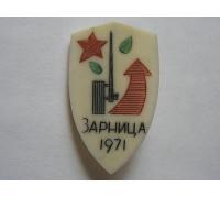 Знак Зарница 1971 (кость)